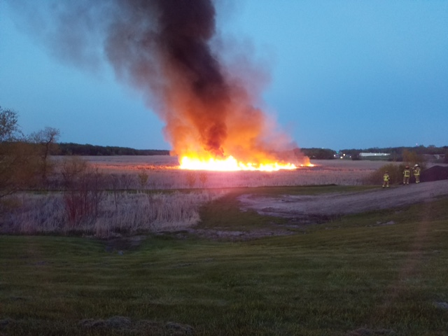A fire burned more than 50 acres of swamp near Independence City Hall Sunday evening and Monday morning. (Submitted photo)