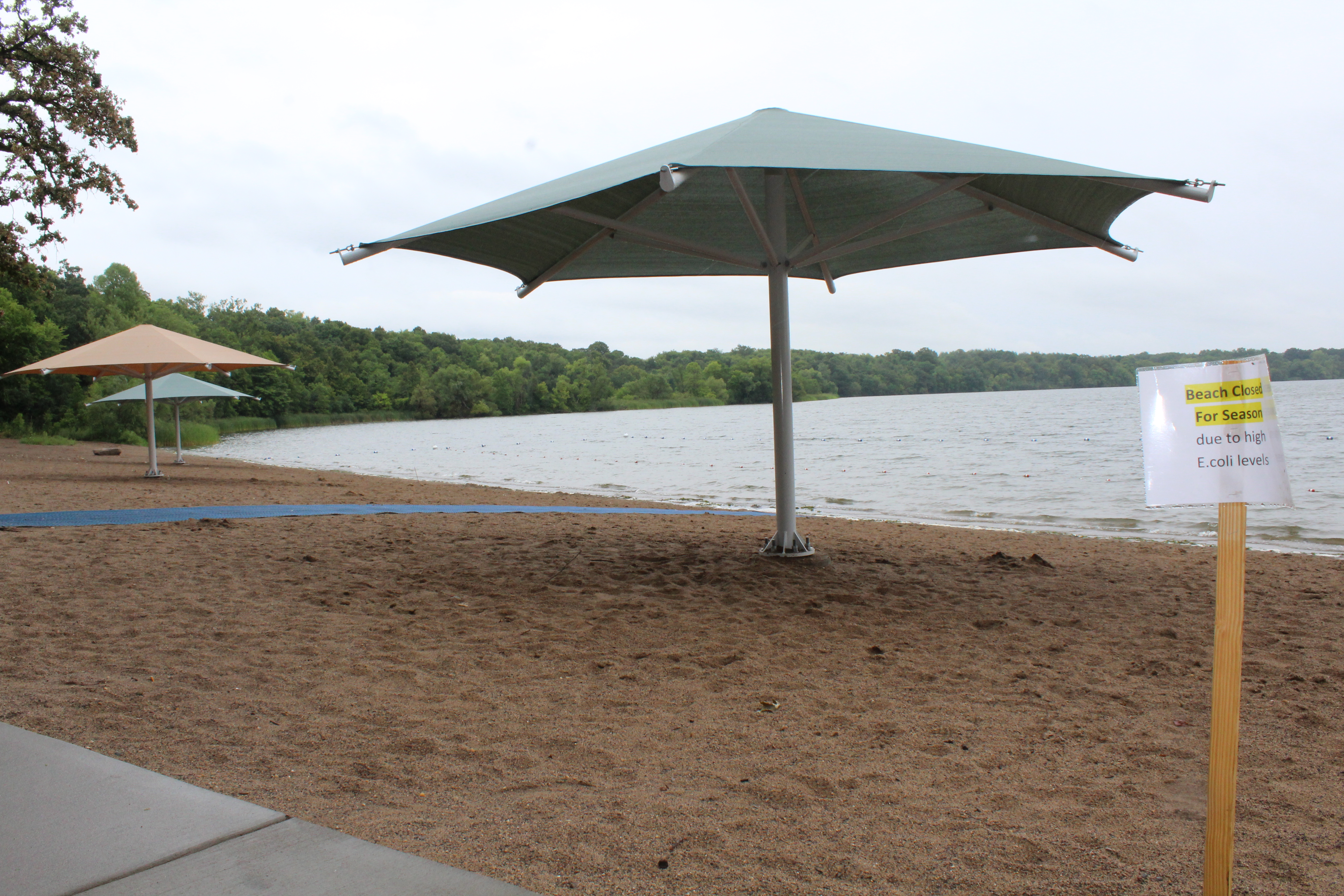The Lake Rebecca beach has been closed due to high E. coli levels.