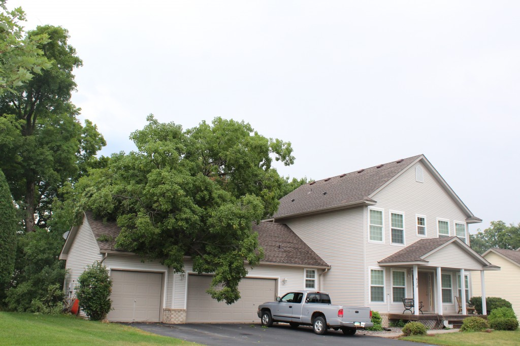 A large tree fell on the garage at 638 Montrose Ave. in Delano in the early morning hours Tuesday. Though the garage sustained significant damage, no one was injured, and no vehicles were damaged. The home belongs to Pete and Amy Johnson.