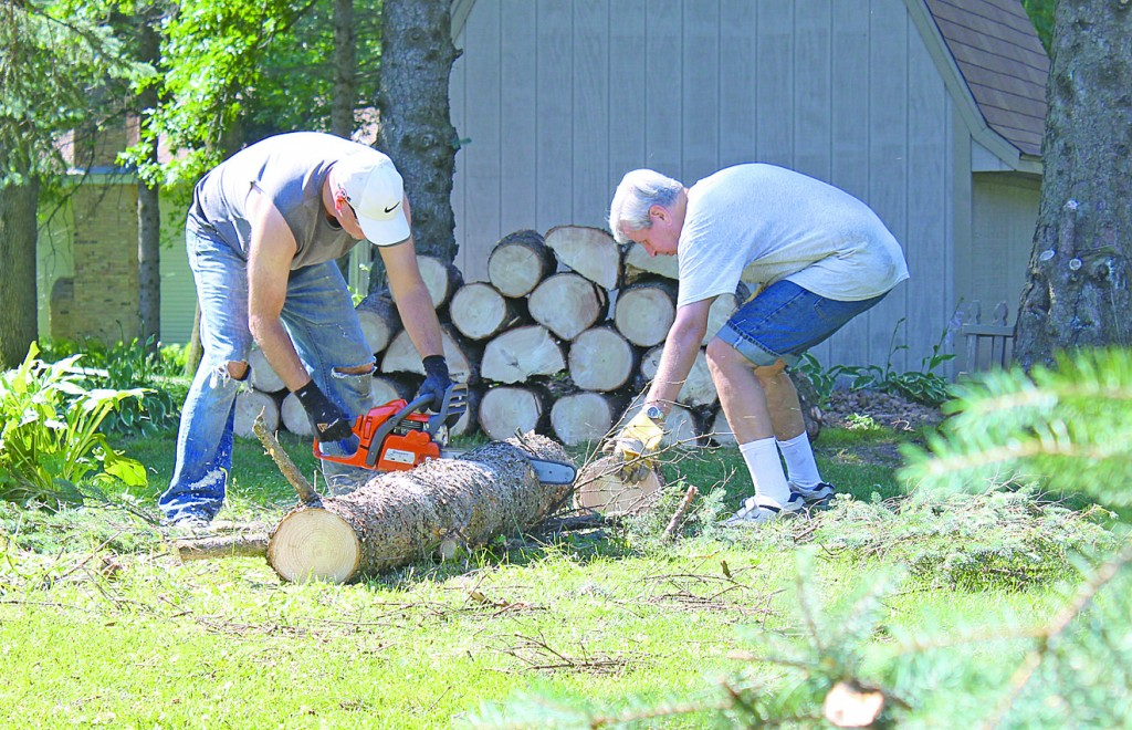 Mario Lucarelli and Tom Vieau work to clean up a 40-year-old pine tree that fell as a result of high winds Tuesday evening. See more in Friday's Delano Herald Journal.