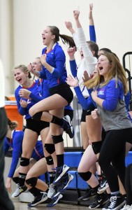 The Watertown-Mayer bench celebrates a point in the first set of the Section 5AA final against Delano Thursday at the Academy of Holy Angels. Photo by Matt Kane